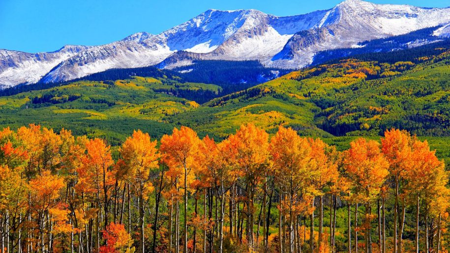 Fall Activities and Adventures in Colorado Springs